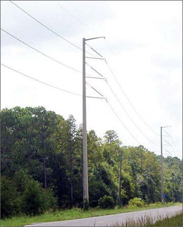 Photo of typical transmission structure