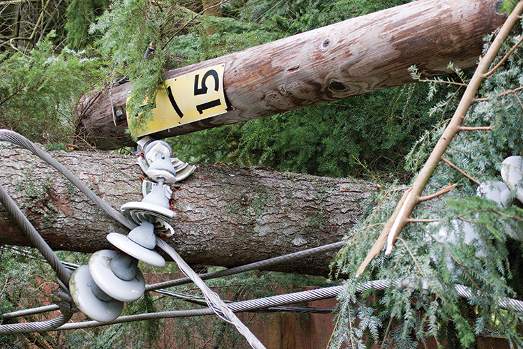 Broken utility poles and distribution lines in the wake of storm damage.