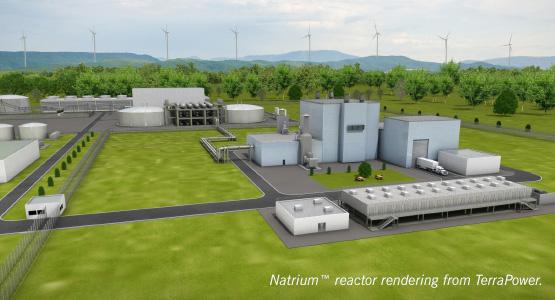 Rendering of a reference design nuclear plant.