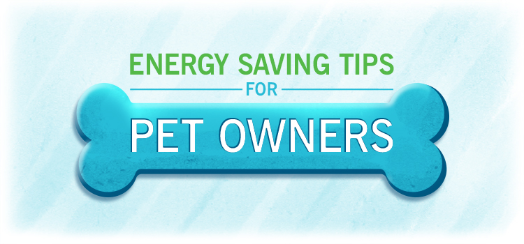 Energy Saving Tips for Pet Owners