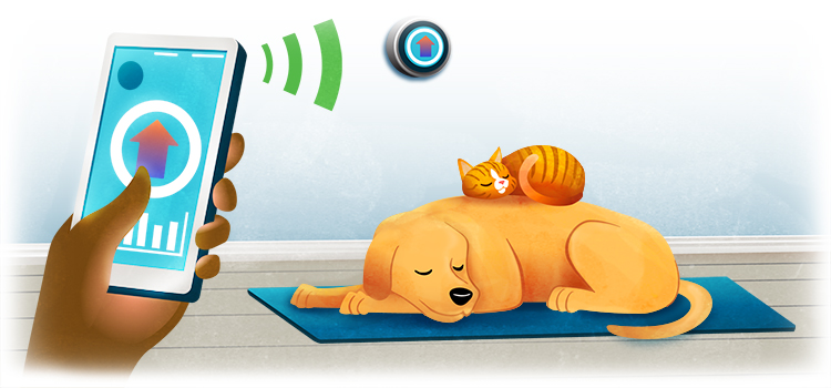 graphic of a dog lying down on a mat with a cat laying on top